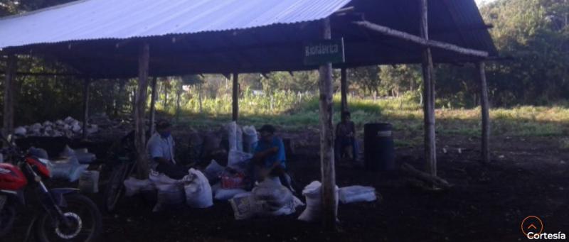 """""""No queremos ser esclavizados en nuestras tierras"""" denuncian a Sembrando Vida  en Yucatán"""