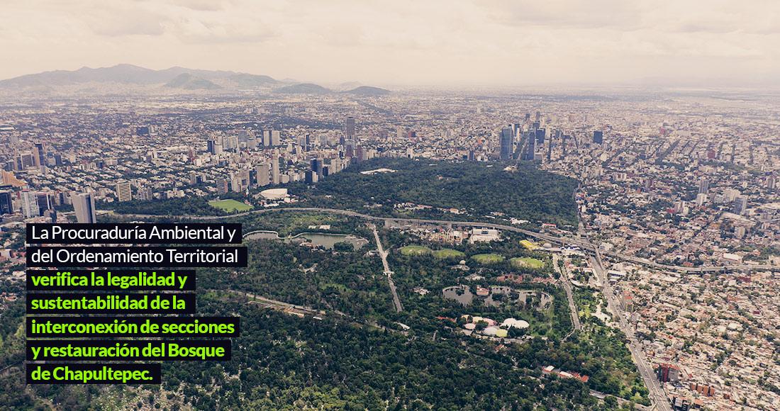 Chapultepec, listo para el mayor espacio bicultural del país. Los vecinos dudan y exigen consulta (Ciudad de México)