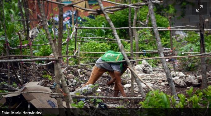 Cerca de 300 familias se instalan en un terreno irregular de Cancún