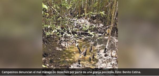 Campesinos de Chapab se niegan a ceder tierras ejidales (Yucatán)