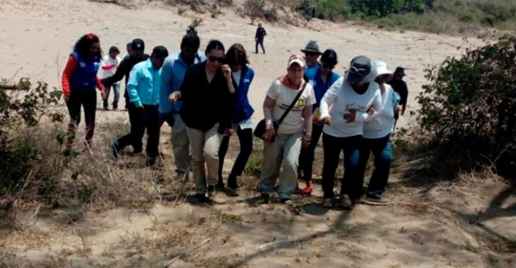 Reinicia búsqueda de personas desaparecidas en Veracruz: Solecito