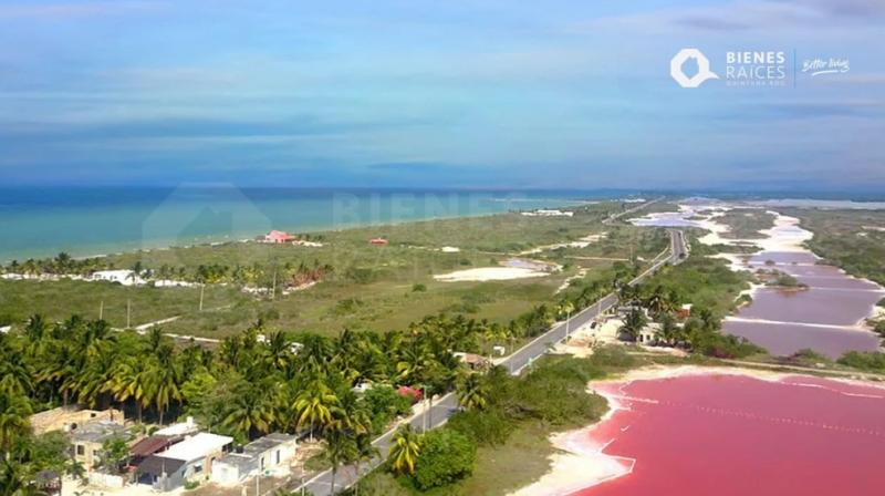 Arrasan inmobiliarias con predios ejidales y costeros de Yucatán