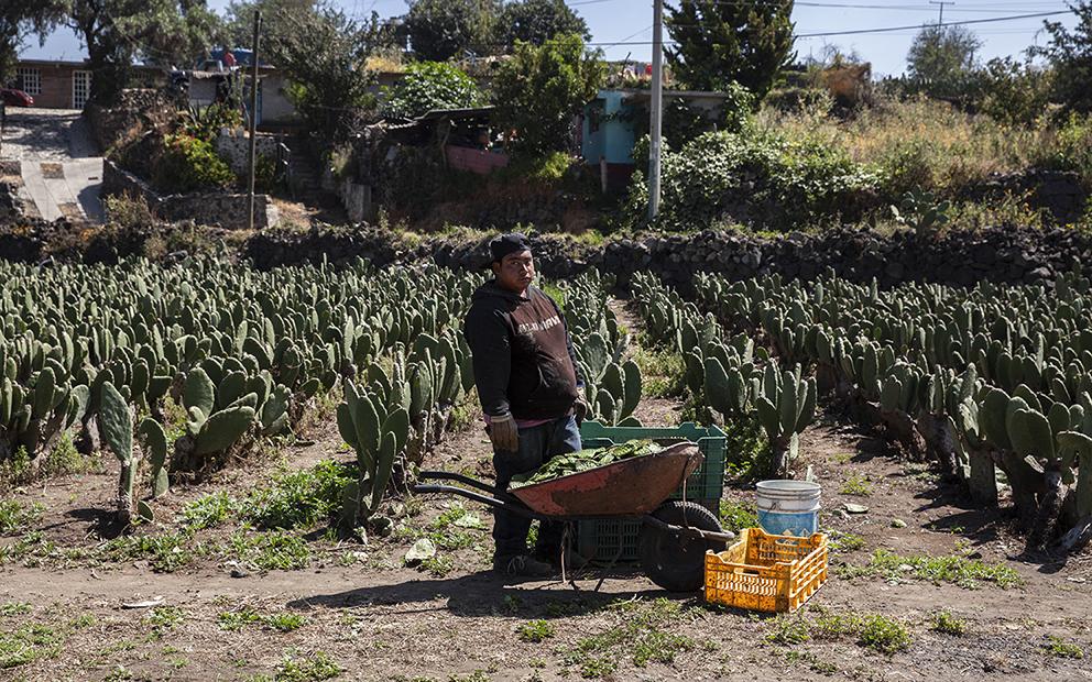 Pobladores de Milpa Alta denuncian saqueo de agua para colonias céntricas de CDMX