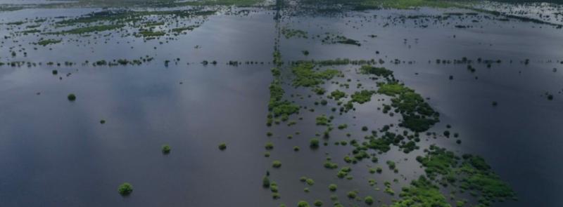 México: esto sucede cuando se tumba selva en el territorio maya