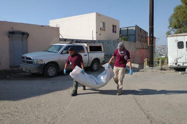 Se siguen descubriendo cadáveres enterrados, siete en la jornada del miércoles 21 (Baja California)