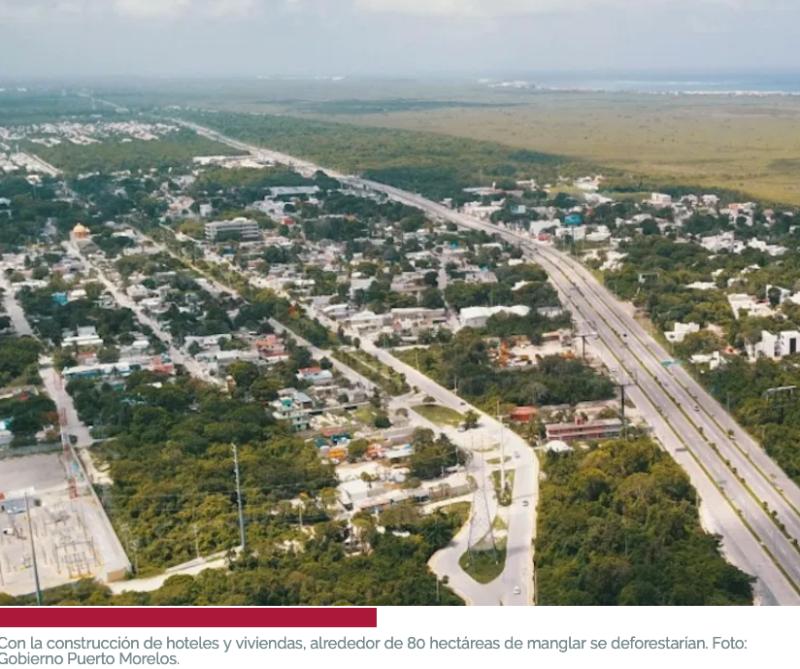 Hoteles de 10 pisos, casas: El Tren Maya abre el apetito por Puerto Morelos. Pero en zona protegida