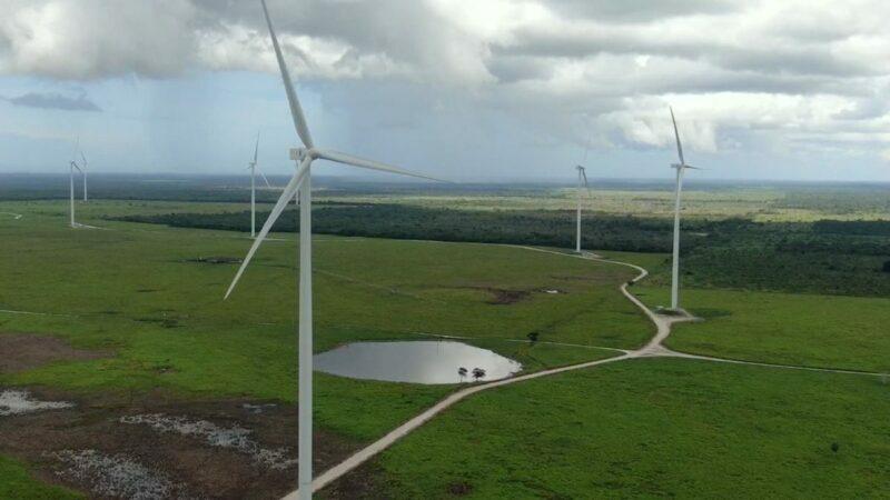 Sin estudio ambiental regional, inauguran parque eólico en Tizimín
