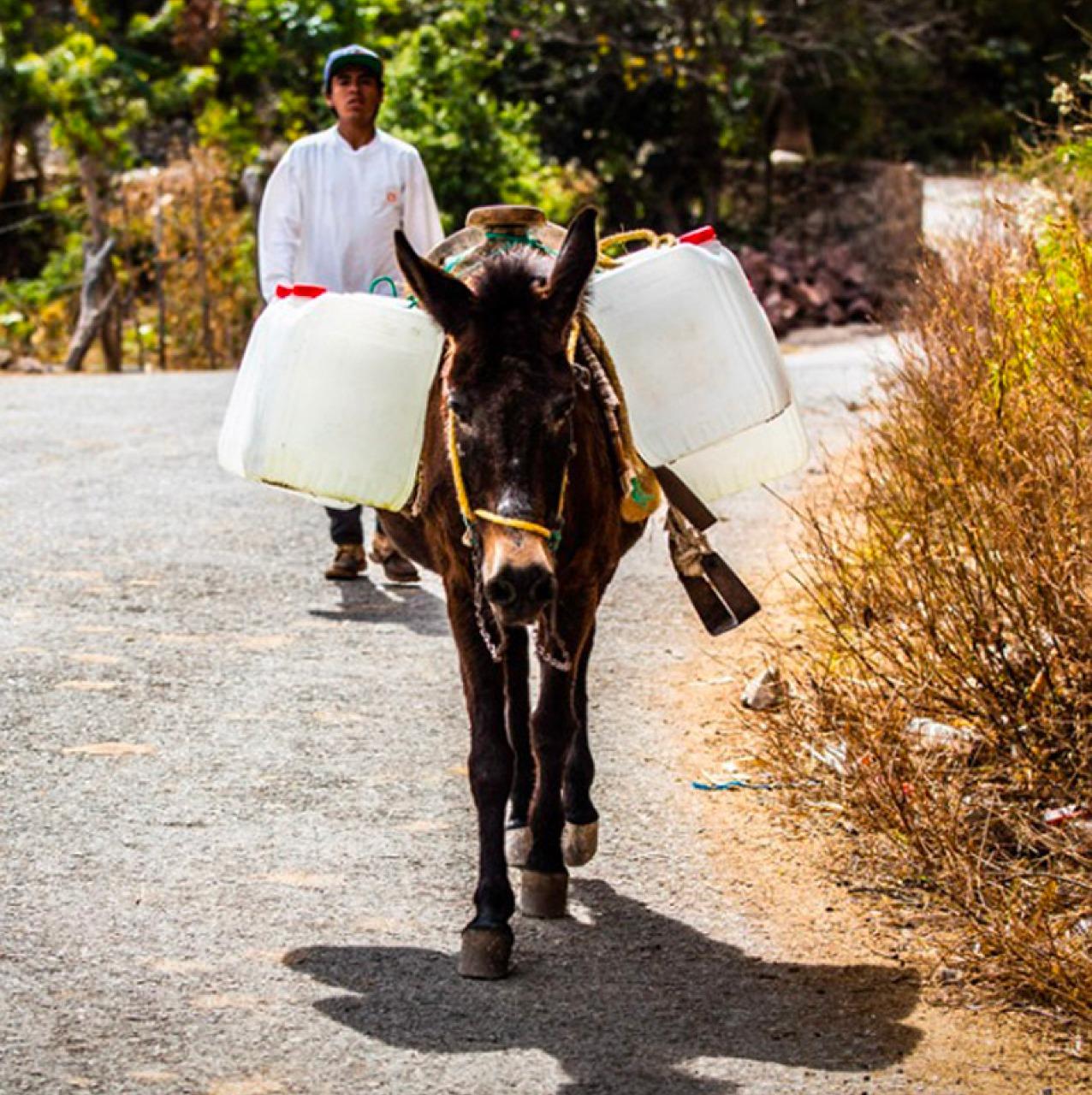 San José Chalmita, la comunidad marginada a la que la CFE le quitó el agua. Parte dos (Estado de México)
