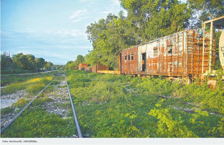 Juzgado concede suspensión provisional de Fase 1 del Tren Maya en 3 municipios de Yucatán