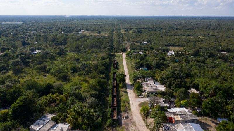 Tres comunidades de Campeche obtienen suspensión provisional contra Tren Maya