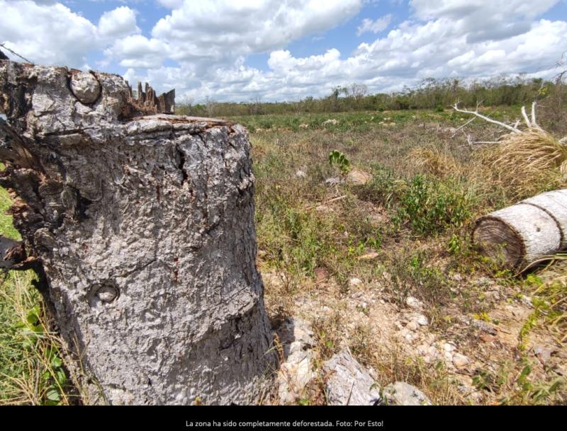 Grupo Xcaret: Ejidatarios acusan de 'robo' de tierras por parque temático Xibalbá en Valladolid (Yucatán)