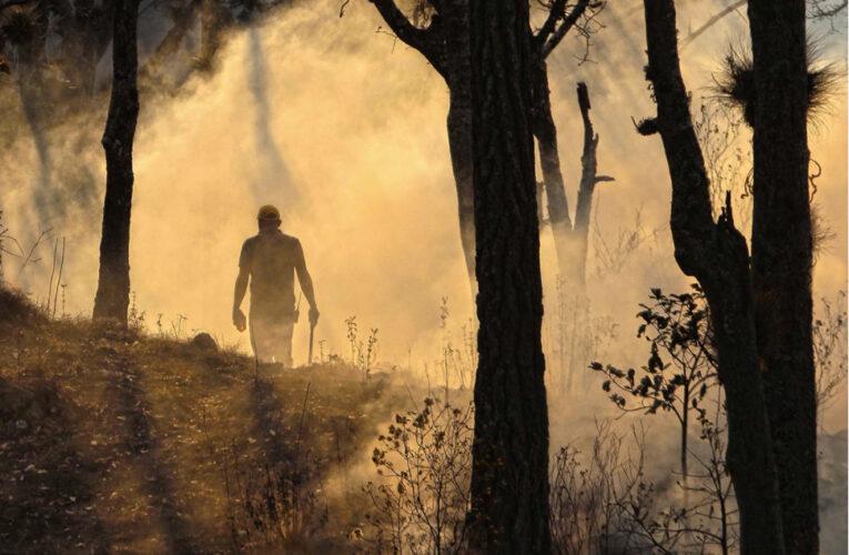 Guerrero: Sin ayuda del gobierno, ciudadanos arriesgan su vida para apagar incendios