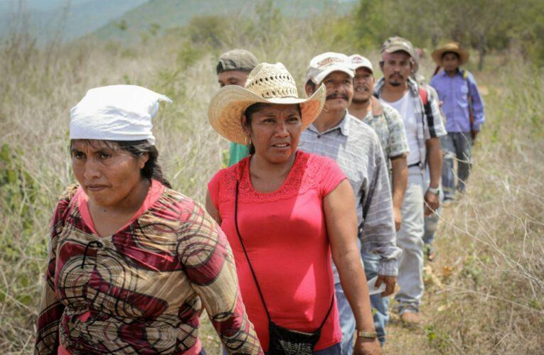 Ostula reactiva la defensa legal de su territorio (Michoacán)