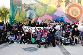 Ante la imposición de Chedraui, mujeres se organizan en defensa de la vida (Ciudad de México)