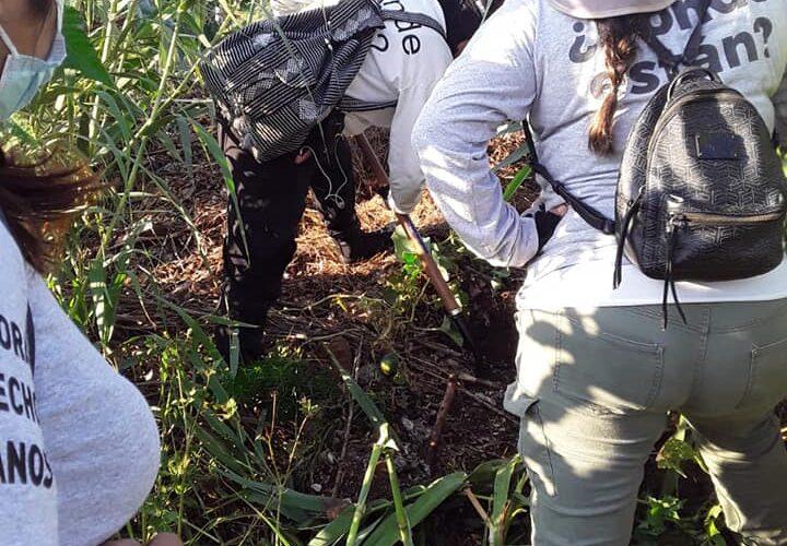 Inicia Comisión de Búsqueda de Oaxaca su trabajo sin presupuesto; colectivos ayudan en búsquedas