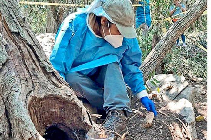 Localizan en Tamaulipas más campos de exterminio